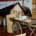 Ausstellung Vadiana St.Gallen, Buchvernissage