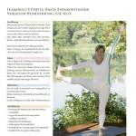 Faszination Yoga, Buchgestaltung 2 Bänder